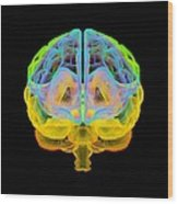 Human Brain, Artwork Wood Print