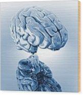 Human Brain, Artwork Wood Print by Victor Habbick Visions