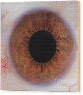 Human Eye Wood Print