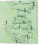 Human Genome, Conceptual Image Wood Print by Lawrence Lawry