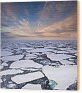Ice Floes At Sunset Near Mertz Glacier Wood Print