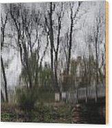 Impression Of Winter Wood Print