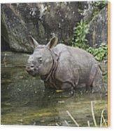 Indian Rhinoceros Rhinoceros Unicornis Wood Print by Konrad Wothe