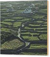 Inisheer, Aran Islands, Co Galway Wood Print