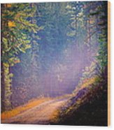 Into The Light Wood Print by Donna Duckworth