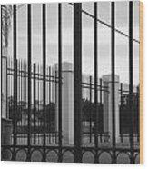 Iron And Pillars Wood Print