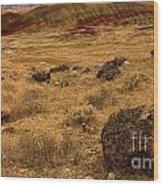 John Day Painted Hills Wood Print