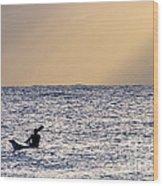 Kayak At Dawn Wood Print