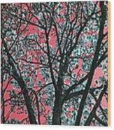 Kimono Pink Wood Print