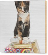 Kitten On Packages Wood Print