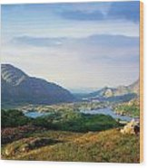 Ladies View, Killarney, Co Kerry Wood Print