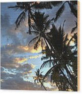 Lahaina Wood Print by James Roemmling