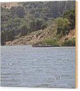 Lake Shabot Wood Print