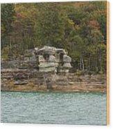 Lake Superior Pictured Rocks 49 Wood Print