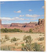 Land Of Many Canyons Wood Print