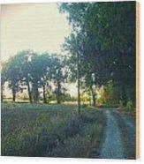 Landscape Near Mauvezin Wood Print