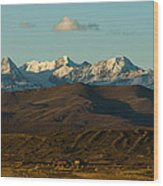 Landscape Of The Highlands And The Cordillera Real. Republic Of Bolivia. Wood Print