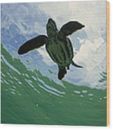Leatherback Sea Turtle Dermochelys Wood Print