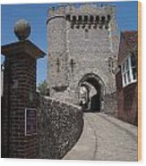 Lewes Castle Wood Print