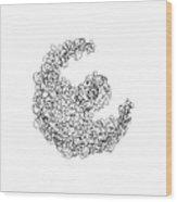 Line 3 Wood Print by Rozita Fogelman