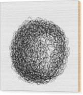Line 5 Wood Print by Rozita Fogelman