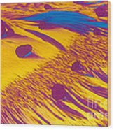 Lm Of Estradiol Wood Print
