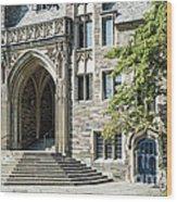 Lockhart Hall Princeton Wood Print