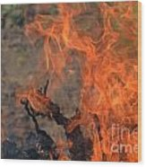 Log Fire And Flames Wood Print
