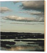 Lowcountry Marsh Front Wood Print