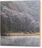 Lower Lake, Glendalough, County Wood Print