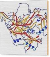 Lysyl Oxidase Enzyme Molecule Wood Print