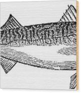 Mackerel Wood Print