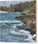 Mahaulepu Beach Wood Print