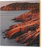 Maine Granite Coast Wood Print
