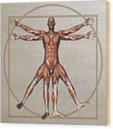Male Musculature, Artwork Wood Print
