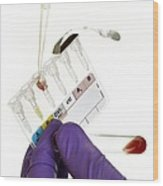 Manual Rhesus Test On Blood Wood Print