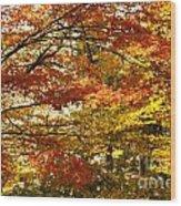 Maple Tree Foliage Wood Print