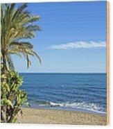 Marbella Beach In Spain Wood Print