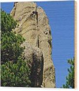 Mica Rock In The Black Hills Wood Print
