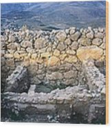 Midea Ruins Wood Print