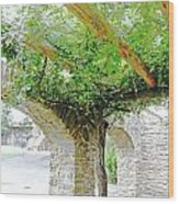 Mission San Jose San Antonio Texas Wood Print