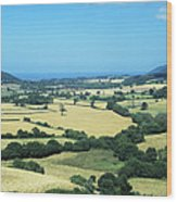 Mixed Farmland Wood Print