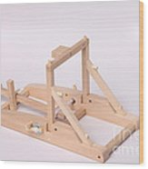 Model Catapult Wood Print by Ted Kinsman