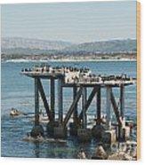 Monterey City Center Wood Print