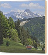 Mountain Landscape In The Alps Wood Print