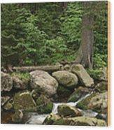 Mountain Stream Wood Print by Torsten Dietrich