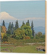 Mt. Adams In The Country Wood Print