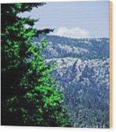 Mt Desert Island Maine Wood Print