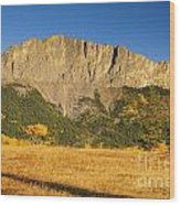 Mt Yamnuska Wood Print