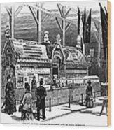 New Orleans Fair, 1884 Wood Print
